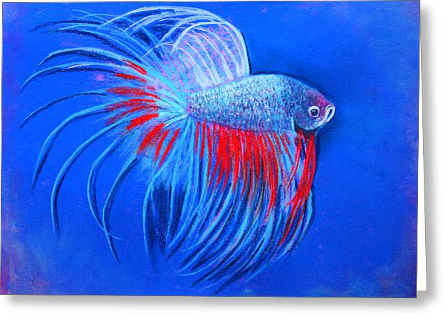 Betta Pastels Greeting Cards - The Closeup Greeting Card by M Diane Bonaparte