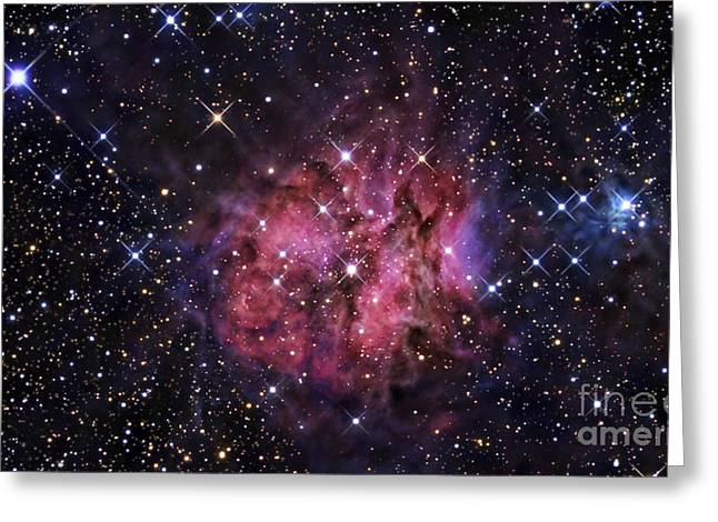 Interstellar Space Greeting Cards - The Cocoon Nebula Greeting Card by R Jay GaBany