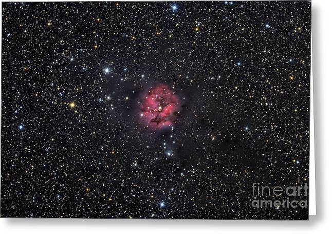 Interstellar Space Greeting Cards - The Cocoon Nebula Greeting Card by Roth Ritter