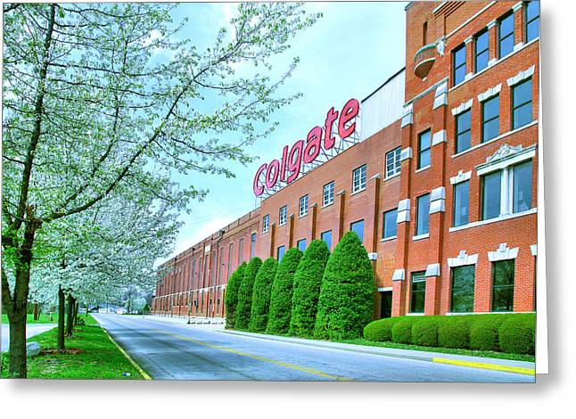 Employer Greeting Cards - The Colgate-Palmolive Building I Greeting Card by Steven Ainsworth