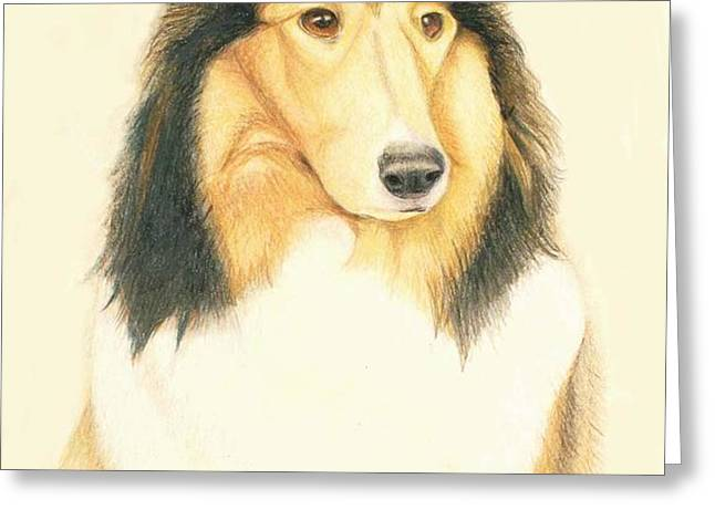 the collie Greeting Card by Tim Ernst