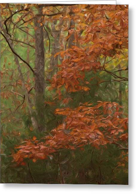 Lexington South Carolina Greeting Cards - The Color Of Fall Greeting Card by Steven Richardson