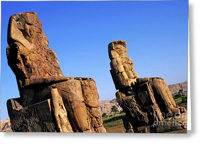 Pharaoh Greeting Cards - The Colossi of Memnon Greeting Card by Sami Sarkis