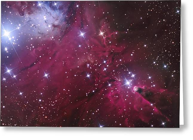 Twinkle Greeting Cards - The Cone Nebula And Christmas Tree Greeting Card by Don Goldman