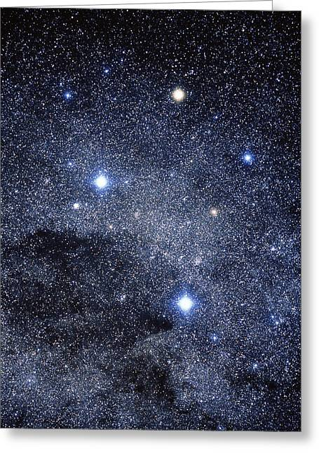 Astrophysical Greeting Cards - The Constellation Of The Southern Cross Greeting Card by Luke Dodd