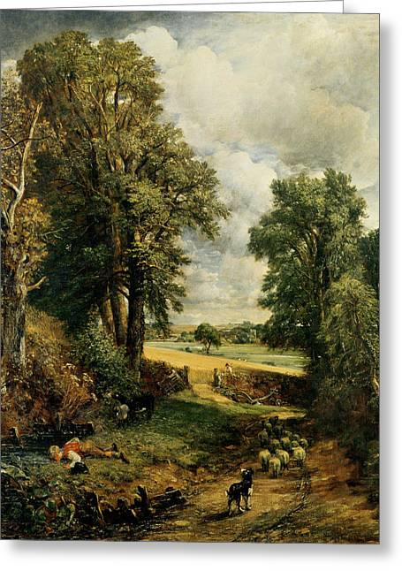 Flock Greeting Cards - The Cornfield Greeting Card by John Constable