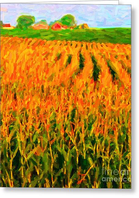 Cornfield Digital Art Greeting Cards - The Cornfield Greeting Card by Wingsdomain Art and Photography