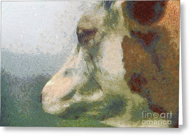 Sweating Paintings Greeting Cards - The cow portrait Greeting Card by Odon Czintos