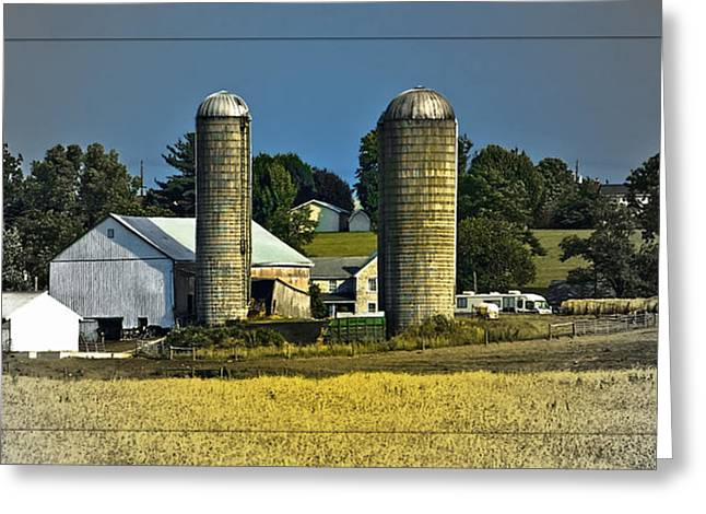 The Cows Have Come Home Greeting Card by DigiArt Diaries by Vicky B Fuller