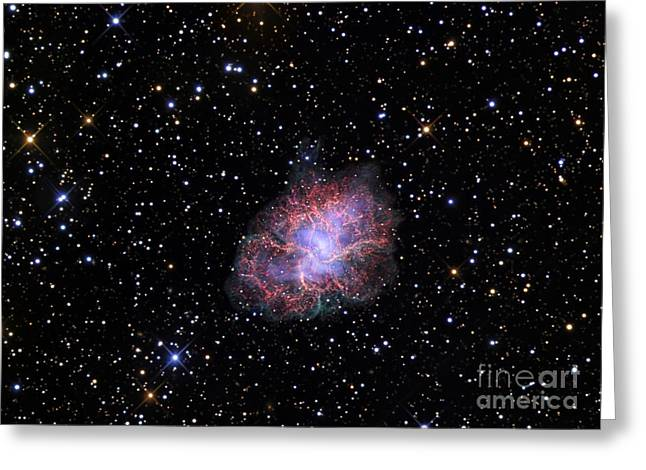 Crab Nebula Greeting Cards - The Crab Nebula Greeting Card by R Jay GaBany