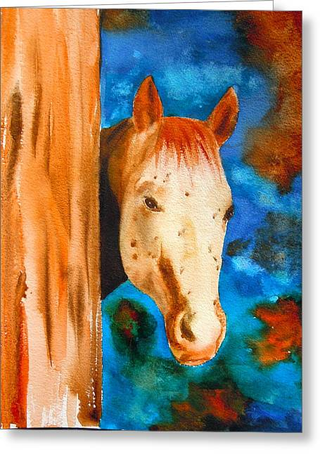 Water Color Greeting Cards - The Curious Appaloosa Greeting Card by Sharon Mick