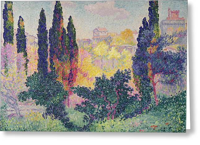 The Cypresses at Cagnes Greeting Card by Henri-Edmond Cross