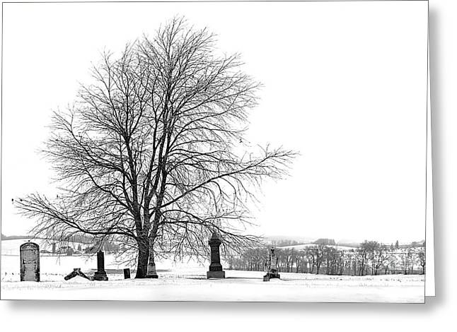 Jak Of Arts Photography Greeting Cards - The Dead of Winter Greeting Card by Jak of Arts Photography