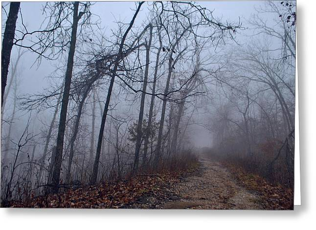Jeka World Photography Greeting Cards - The Deep Dark Woods Greeting Card by Jeff Rose