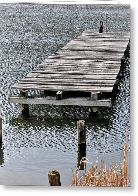 Swift Family Greeting Cards - The Dock Greeting Card by Swift Family