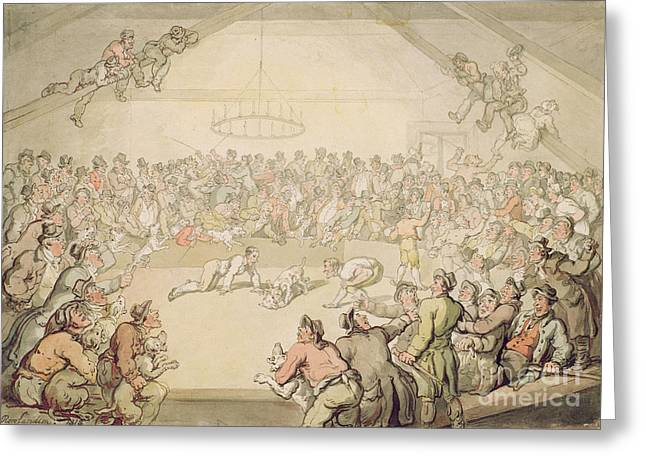 Rowlandson Greeting Cards - The Dog Fight Greeting Card by Thomas Rowlandson