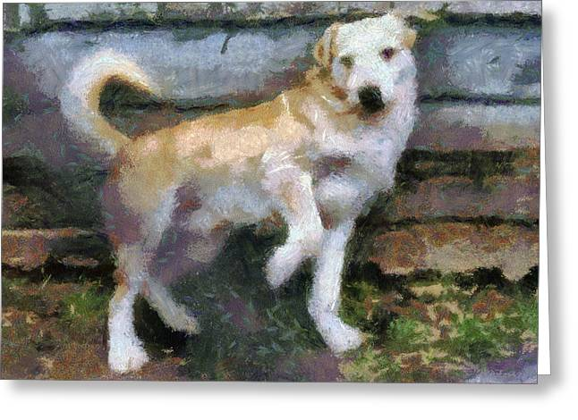 Sweating Paintings Greeting Cards - The dog Greeting Card by Odon Czintos