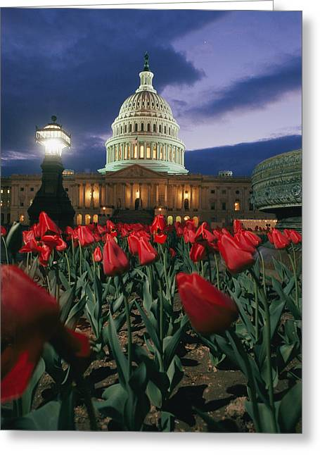 Streetlight Greeting Cards - The Dome Of The United States Captiol Greeting Card by Richard Nowitz