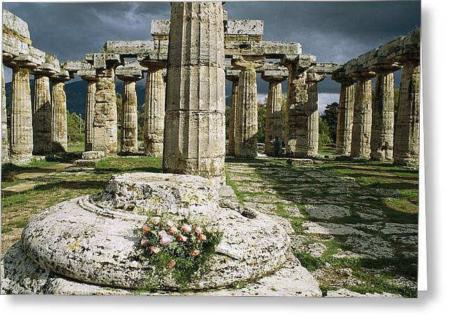Ruins And Remains Greeting Cards - The Doric Columns Of The Greek Temple Greeting Card by Sisse Brimberg