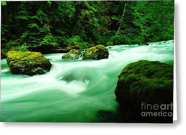 Moss Green Greeting Cards - The Dosewallups River  Greeting Card by Jeff  Swan