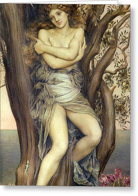 Evelyn De Greeting Cards - The Dryad Greeting Card by Evelyn De Morgan