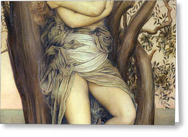 The Dryad Greeting Card by Evelyn De Morgan