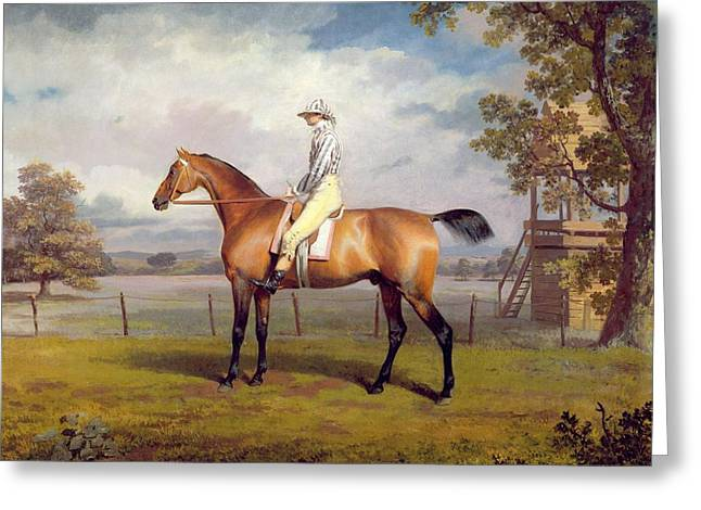 The Duke Of Hamilton's Disguise With Jockey Up Greeting Card by George Garrard