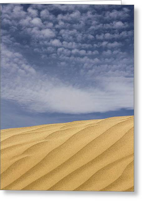 Sand Dunes Greeting Cards - The Dunes 2 Greeting Card by Mike McGlothlen