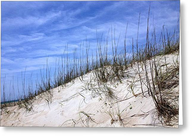 Marlin Tournaments Greeting Cards - The Dunes of Atlantic Beach NC Greeting Card by Joan Meyland