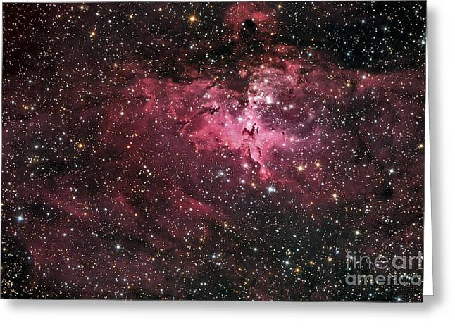 Eagle Nebula Greeting Cards - The Eagle Nebula Greeting Card by Roth Ritter