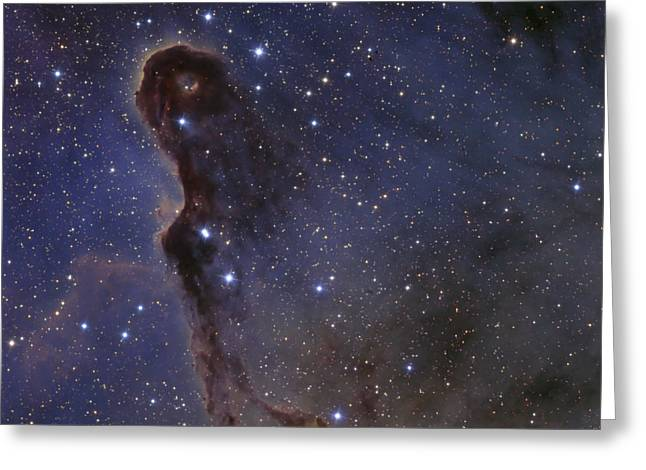 Interstellar Medium Greeting Cards - The Elephants Trunk Nebula In The Star Greeting Card by Ken Crawford