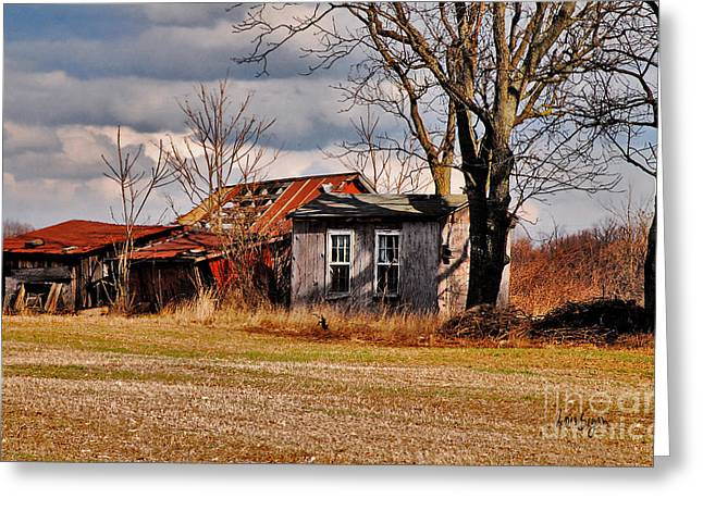 The Old Shed Greeting Cards - The End Of Days Greeting Card by Lois Bryan
