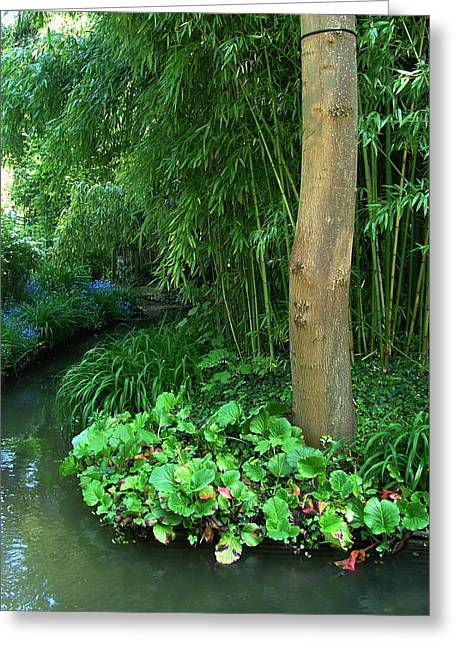 Lilly Pad Greeting Cards - The Epte Diversion Greeting Card by Danny Cieloha