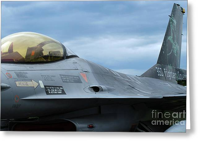Component Greeting Cards - The F-16 Aircraft Of The Belgian Army Greeting Card by Luc De Jaeger