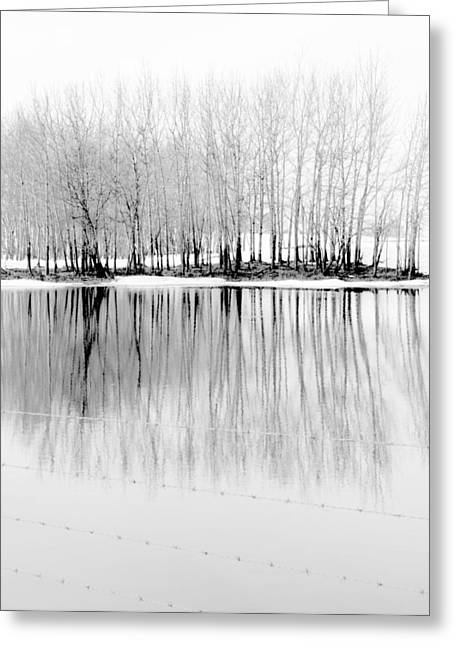 Edmonton Photographer Greeting Cards - The Fair Glare Greeting Card by Jerry Cordeiro