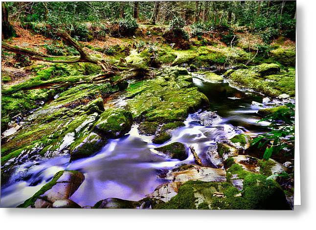 Hdr Landscape Greeting Cards - The Fairy brook Greeting Card by Kim Shatwell-Irishphotographer