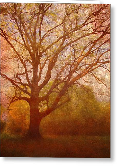 Epic Amazing Colors Landscape Digital Modern Still Life Trees Warm Natural Earth Organic Paint Chic Decor Interior Design Brett Pfister Art Fall Red Brown Tan Texture Surreal Fantasy Abstract Yellow Watercolor Paint Greeting Cards - The Fairy Tree Greeting Card by Brett Pfister