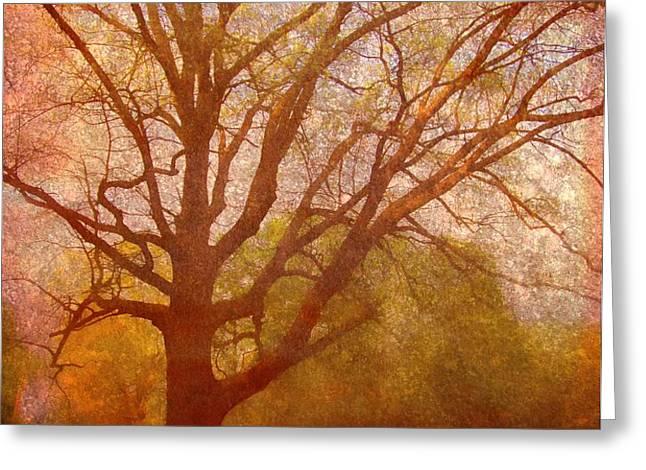 The Fairy Tree Greeting Card by Brett Pfister