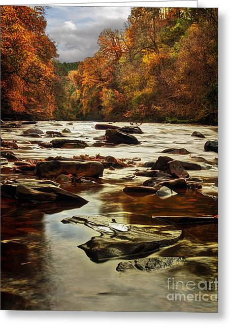 The Fall On The River Avon  Greeting Card by John Farnan