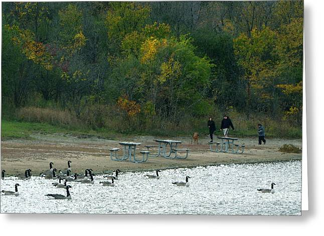 Green And Yellow Greeting Cards - The Family In Autumn Greeting Card by Cedric Hampton