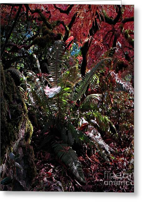 Surreal Landscape Mixed Media Greeting Cards - The Feather Greeting Card by Patricia  Schnepf