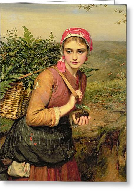 Roots Paintings Greeting Cards - The Fern Gatherer Greeting Card by Charles Sillem Lidderdale