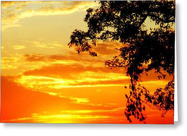 Indiana Landscapes Digital Art Greeting Cards - The Fire Greeting Card by Ed Smith