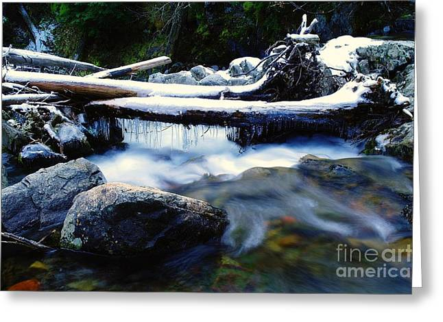 Stream Greeting Cards - The First Icicles  Greeting Card by Jeff  Swan