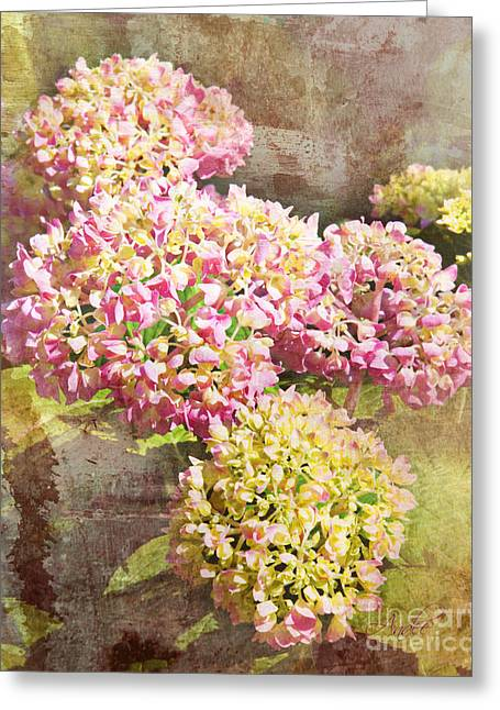 Snowball Mixed Media Greeting Cards - The Fluffy Flora Greeting Card by Andee Design