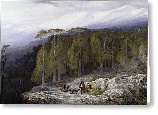 Shepherds Greeting Cards - The Forest of Valdoniello - Corsica Greeting Card by Edward Lear