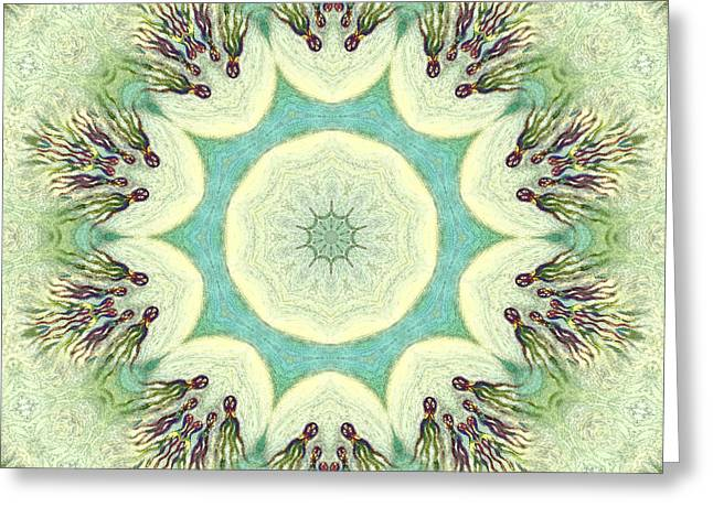 Opposition Digital Greeting Cards - the Four Elements - Water Greeting Card by Linda Cornelius