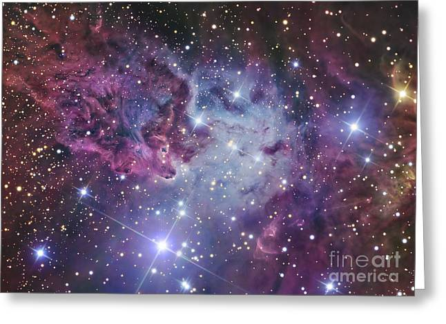 Interstellar Space Greeting Cards - The Fox Fur Nebula Greeting Card by R Jay GaBany