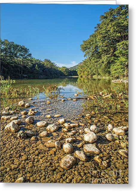 Reflexions Greeting Cards - The Frio River in Texas Greeting Card by Andre Babiak