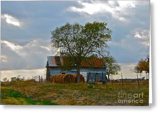 Tin Roof Greeting Cards - The Gathering Place - II Greeting Card by Joe Finney